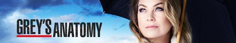 Greys Anatomy S01E02 FRENCH 720p WEB H264-NERO