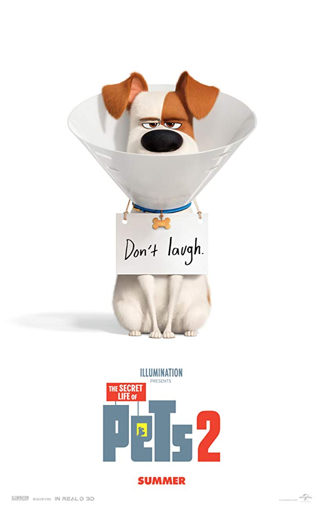 The Secret Life of Pets 2 2019 720p Cam x264-DUSIcTv