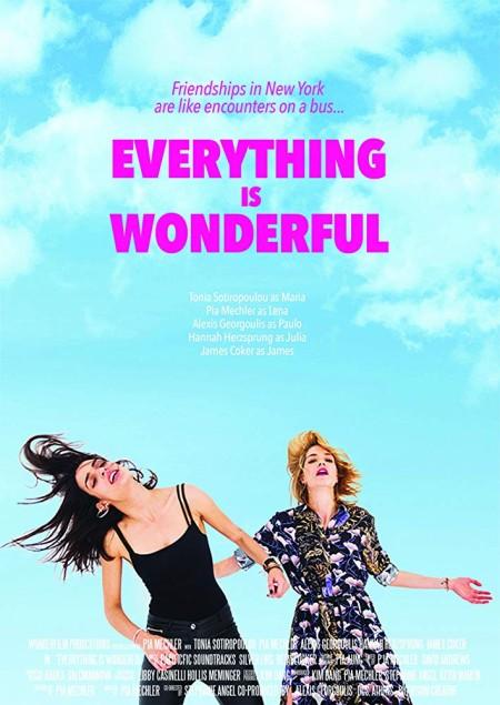 Everything Is Wonderful (2018) 720p WEBRip 800MB x264 GalaxyRG