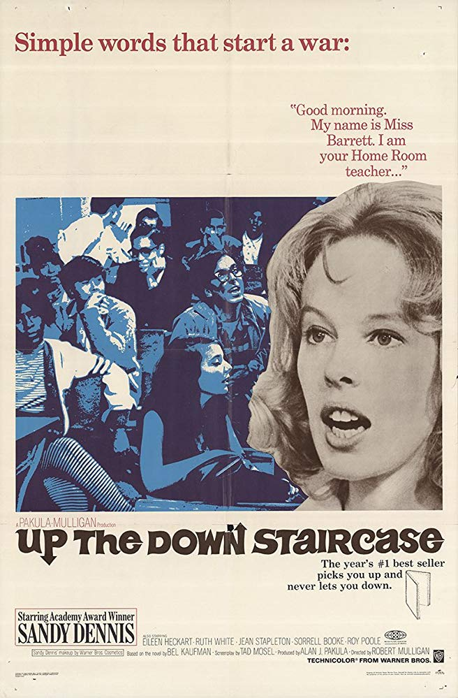 Up the Down Staircase 1967 1080p WEBRip x264-RARBG