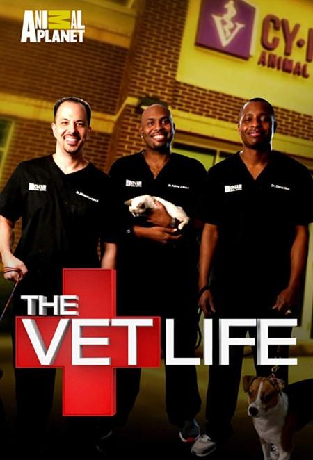 The Vet Life S06E07 Saving Captain Hook iNTERNAL WEB x264-ROBOTS