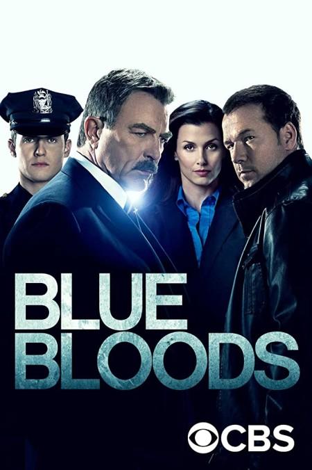 Blue Bloods S10E17 iNTERNAL 480p x264-mSD