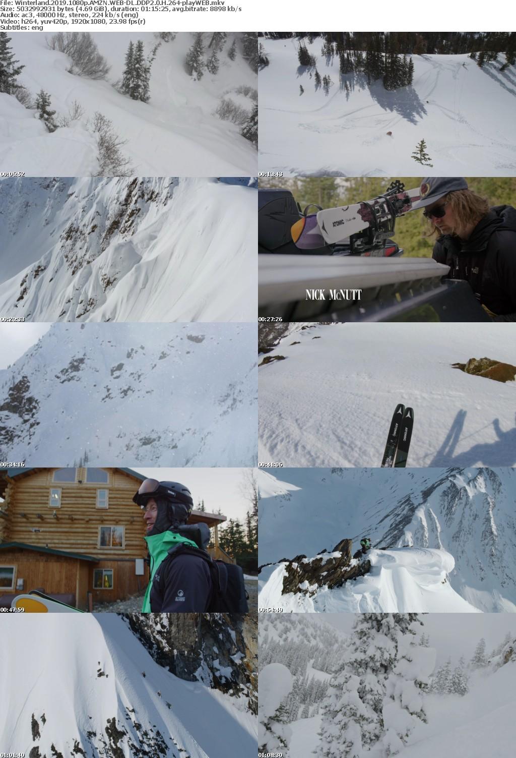 Winterland 2019 1080p AMZN WEBRip DDP2 0 x264-playWEB
