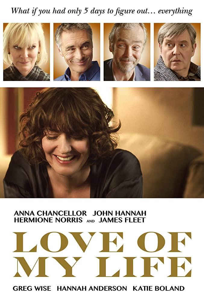 Love of My Life (2013) [720p] [BluRay] [YTS MX]