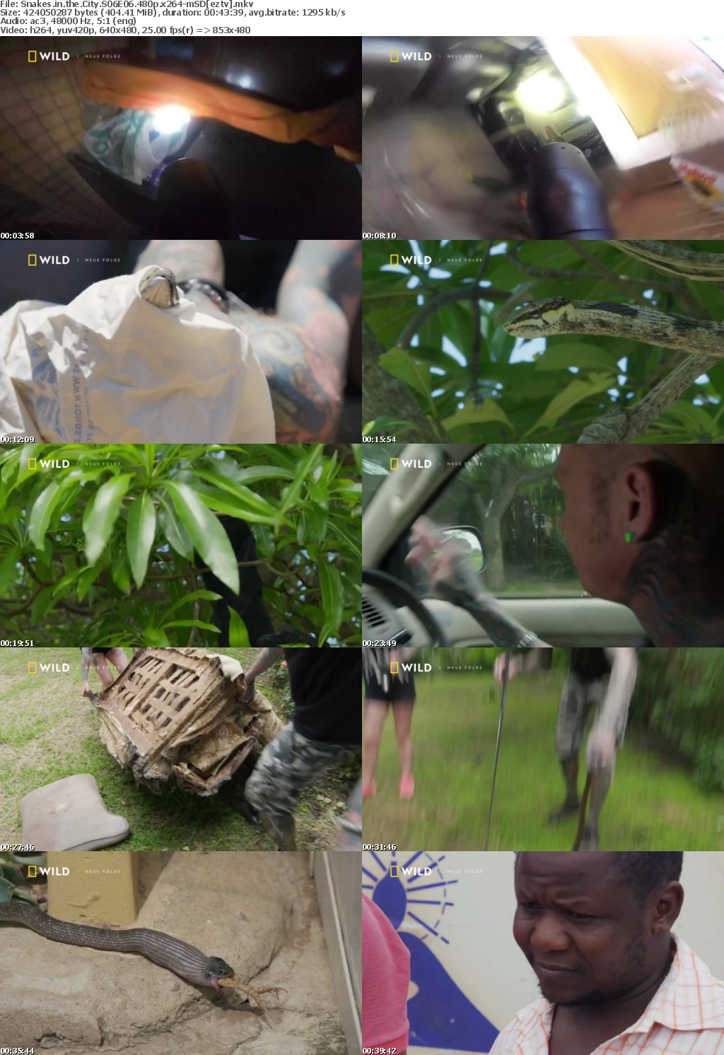 Snakes in the City S06E06 480p x264-mSD