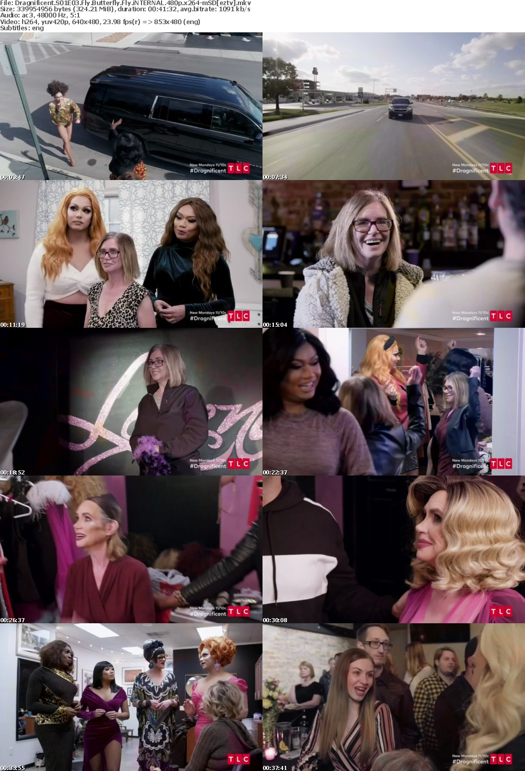 Dragnificent S01E03 Fly Butterfly Fly iNTERNAL 480p x264-mSD