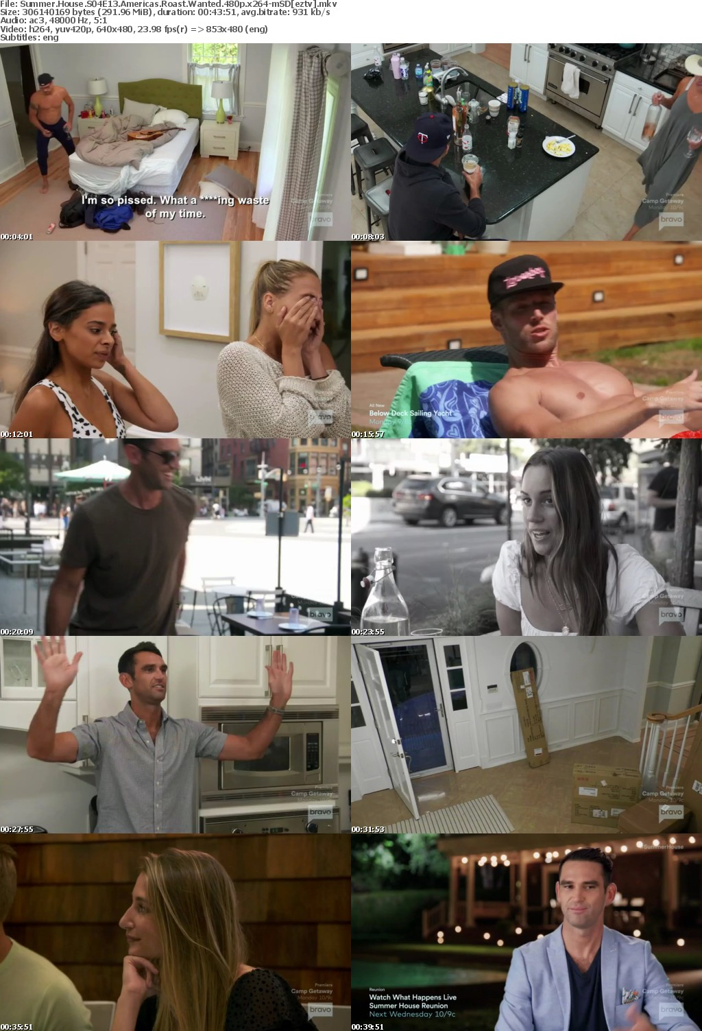 Summer House S04E13 Americas Roast Wanted 480p x264-mSD