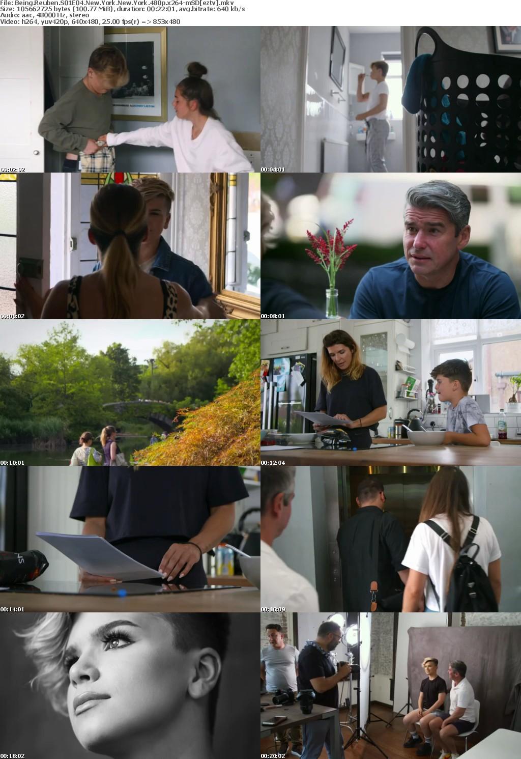 Being Reuben S01E04 New York New York 480p x264-mSD