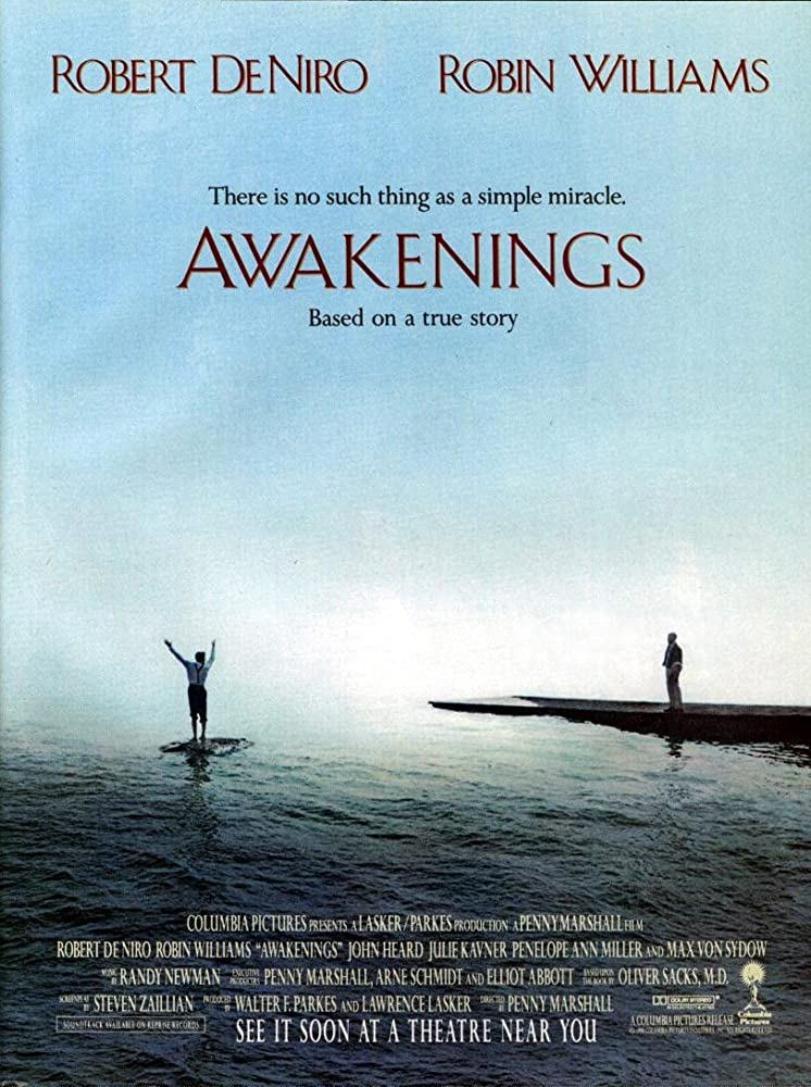 Awakenings 1990 1080p BluRay x265-RARBG