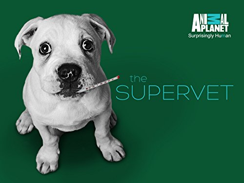 The Supervet S09E01 720p HDTV x264-CBFM
