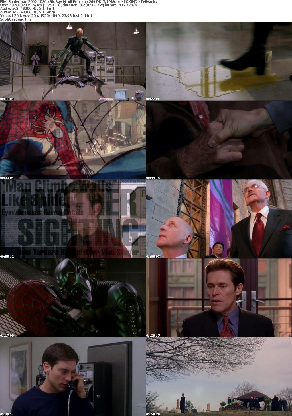 Spiderman (2002) 1080p BluRay Hindi English x264 DD 5.1 MSubs - LOKiHD - Telly