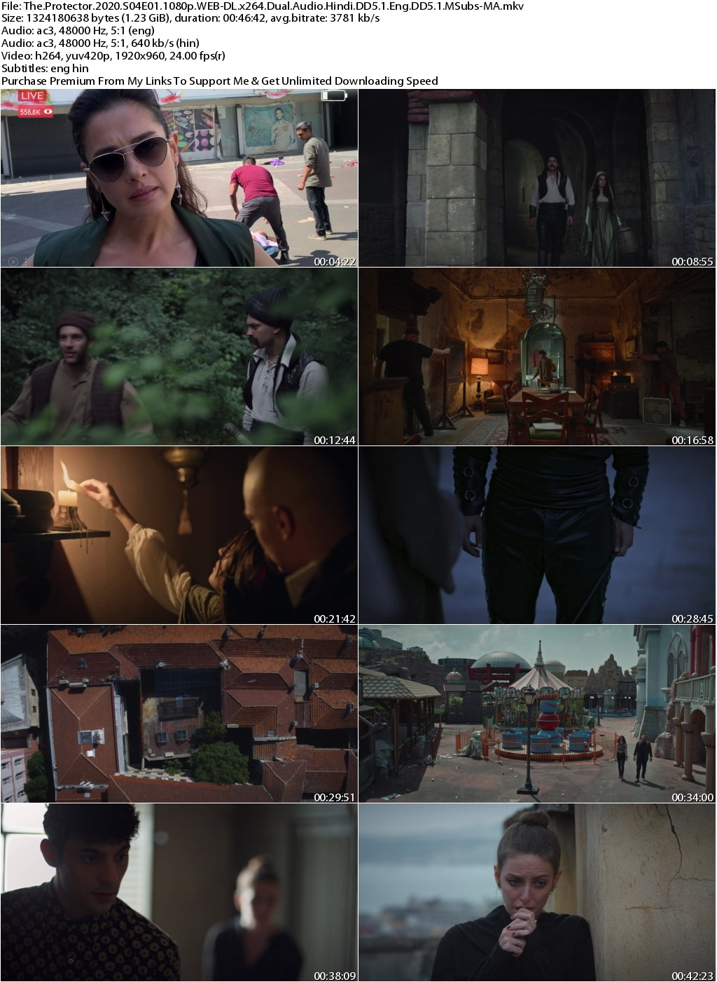 The Protector 2020 S04 Complete 1080p WEB-DL x264 Dual Audio Hindi DD5.1 Eng DD5.1 MSubs 8.3GB-MA