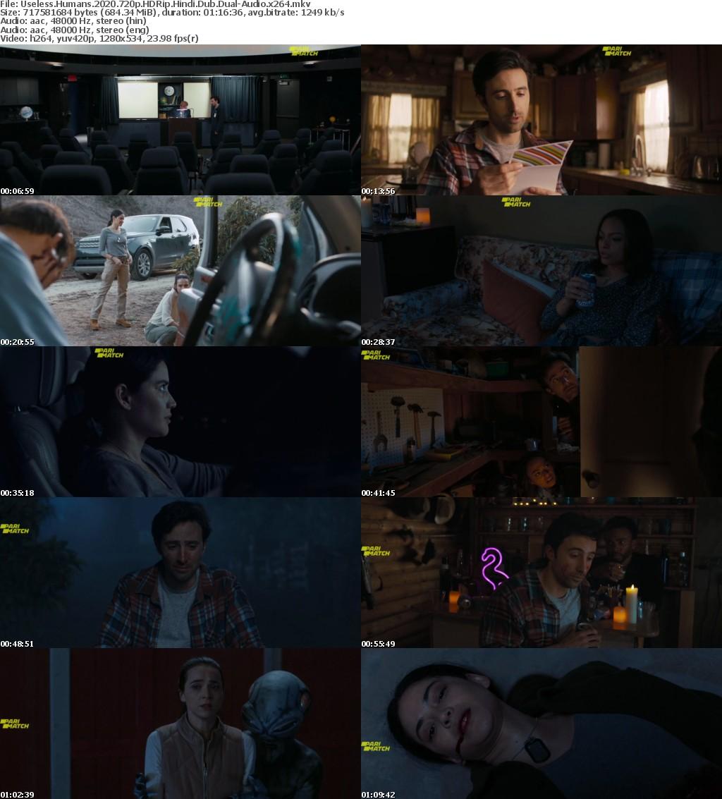 Useless Human (2020) 720p HDRip Hindi-Dub Dual-Audio x264 -