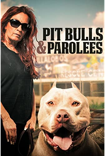 Pit Bulls and Parolees S16E03 Early Premiere Rescued From War WEB h264-ROBOTS
