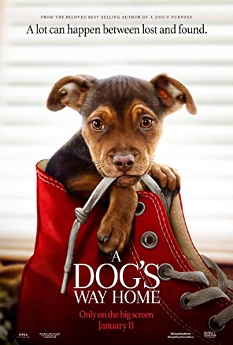 A Dogs Way Home 2019 1080p BluRay x265-RARBG