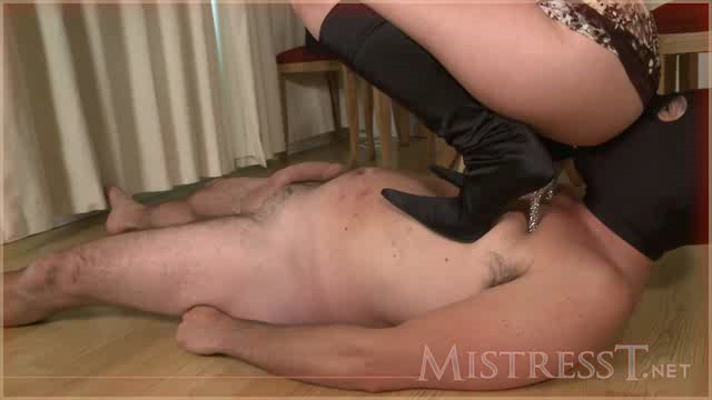 MistressT 11 08 02 Suffer For Her Ass XXX