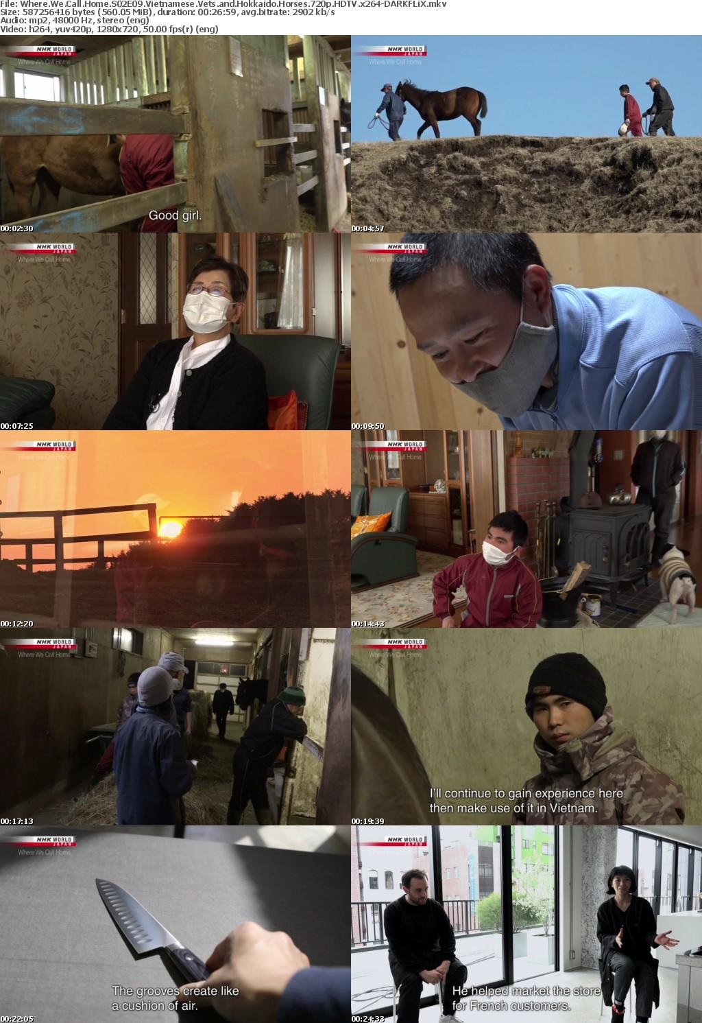 Where We Call Home S02E09 Vietnamese Vets and Hokkaido Horses 720p HDTV x264-DARKFLiX